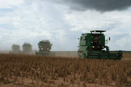 sojaskörd miljö hållbar