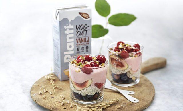planti-yogoat-trifle