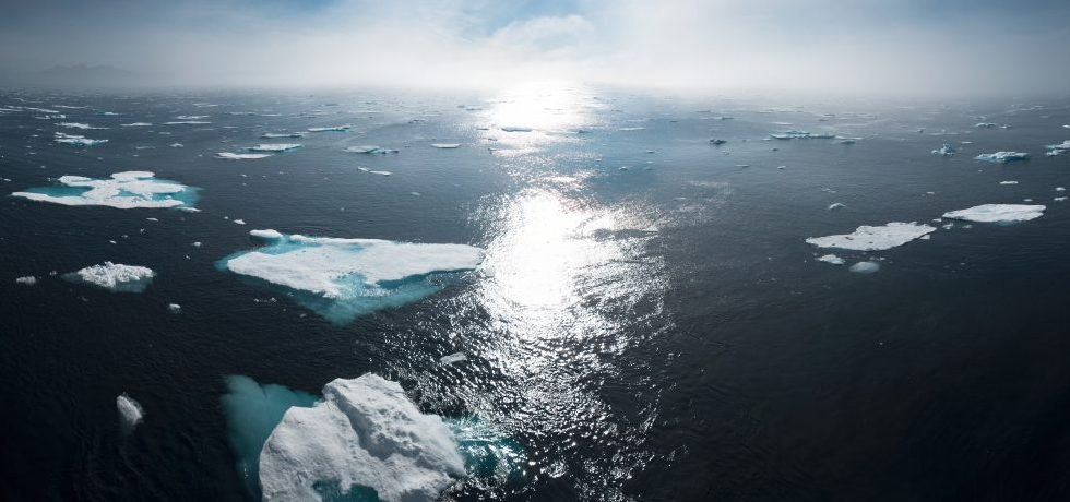 Havsvy med isflak
