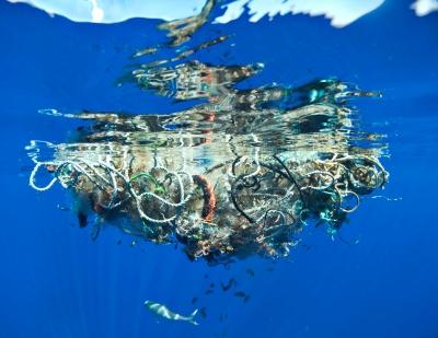 Plastsrkäp i en osymmetrisk klump sedd från sidan under vattenytan.